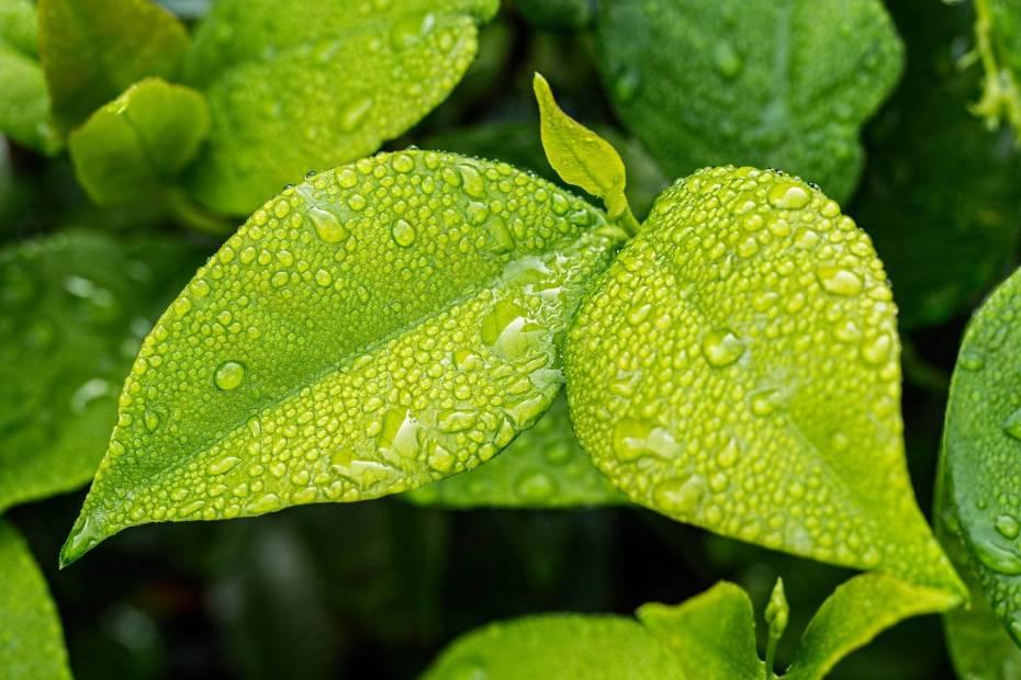 Marketing ekologiczny - czy to się opłaca?